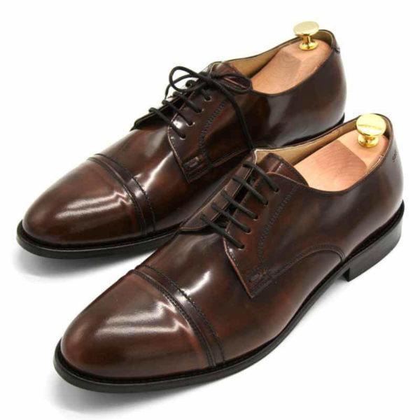 Foto von zwei braunen, schwarz changierenden Herrenschuhen beide mit Schuhspannern mit goldenem Knauf, nach vorne links weisend - Modell Premium Klasse 329